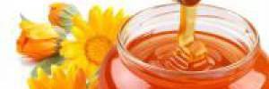 Полезные десерты: грецкие орехи с медом