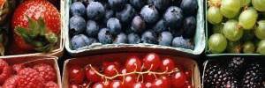Полезные продукты для иммунитета