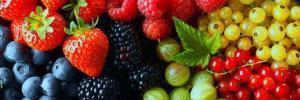 Целебные свойства ягод и листьев черники