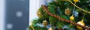 Как вкусно встретить праздники и не поправиться?