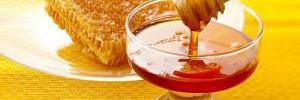 Мед — врачи раскрыли интересные факты о ценном продукте