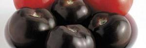 В чем секрет популярности черных овощей?