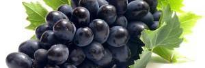 Результативно похудеть можно с помощью винограда