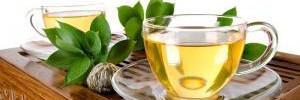 Диетологи рассказали о пользе зеленого чая