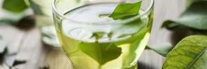 Несколько причин, чтобы пить зеленый чай каждый день