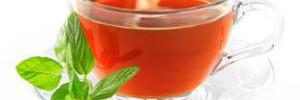 Самое полезное лекарство: десять ягод рябины
