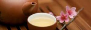 Диетологи советуют выбирать белый чай