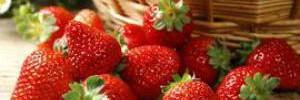 Разоблачаем мифы о здоровом питании
