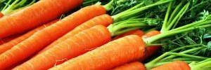 Диетологи объяснили, в чем польза оранжевых овощей и фруктов