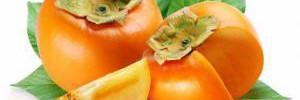 Диетологи рассказали об одном из наиполезнейших осенних фруктов
