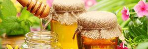 Польза и вред пчелиного меда