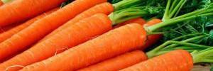 Как вкусно приготовить молодую морковь: советы Джейми Оливера