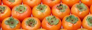 Популярные продукты смертельно опасны для здоровья