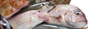 Перечислена рыба, которую лучше не есть
