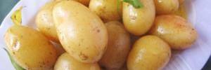 Какую пользу здоровью может принести молодой картофель
