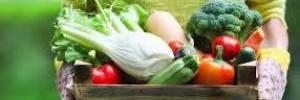 Медики назвали диету снижающую риск смерти