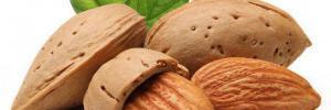 Врачи назвали лучший продукт для снижения холестерина