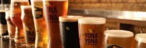 Почему пить пиво полезно для здоровья