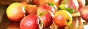 7 продуктов, снижающих аппетит
