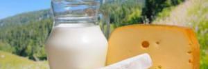 Употребление сыра, сливочного масла и молока не представляет опасности для здоровья сердца