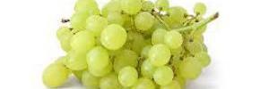 Многие фрукты и ягоды вредны для организма