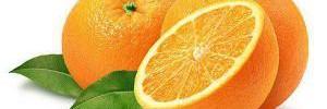 Едим апельсины каждый день!