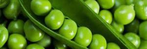 5 причин есть зеленый горошек каждый день