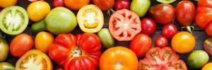 Назван самый полезный овощ для здоровья кишечника