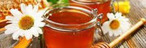 Где, сколько и как хранить мед