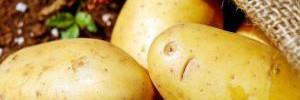 Медики рекомендуют отказаться от употребления картофеля