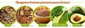 Где содержится растительный белок