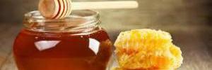 Мед — польза для здоровья и ухода за кожей