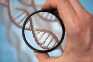 Тест ДНК подскажет лучший вид тренировок — врачи