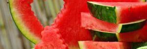 12 интересных фактов об арбузах