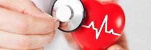 Белок животного происхождения может вызвать болезни сердца