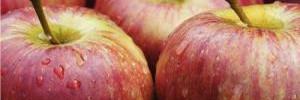 Медики назвали болезнь, от которой спасет кожура яблок