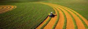 Употребление зеленой еды спасет мир от экологической катастрофы