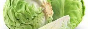 5 причин каждый день есть капусту