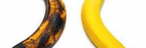 Как выбрать самые полезные для здоровья бананы