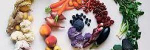 Краткая история вегетарианства 1 часть