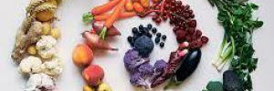 Краткая история вегетарианства 2 часть