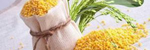 Вкусное и питательное пшено – новая квиноа