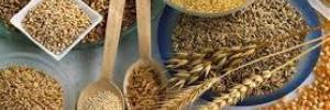 Названы продукты, которые защитят от рака печени