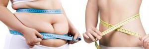 Похудение — снижаем калорийность рациона
