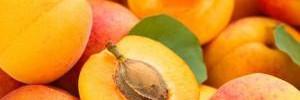 Продукты с высоким содержанием аминокислот насыщают лучше всего