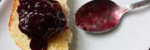 Самое необычное варенье: ТОП-5 фантастических рецептов