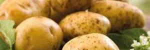 Оригинальные блюда с картофелем