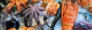 Будущим мамам необходимо каждый день употреблять морепродукты