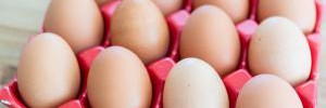 Названы продукты с высоким уровнем пищевого риска