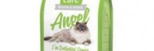 Стоит ли покупать гипоаллергенные корма для кошек
